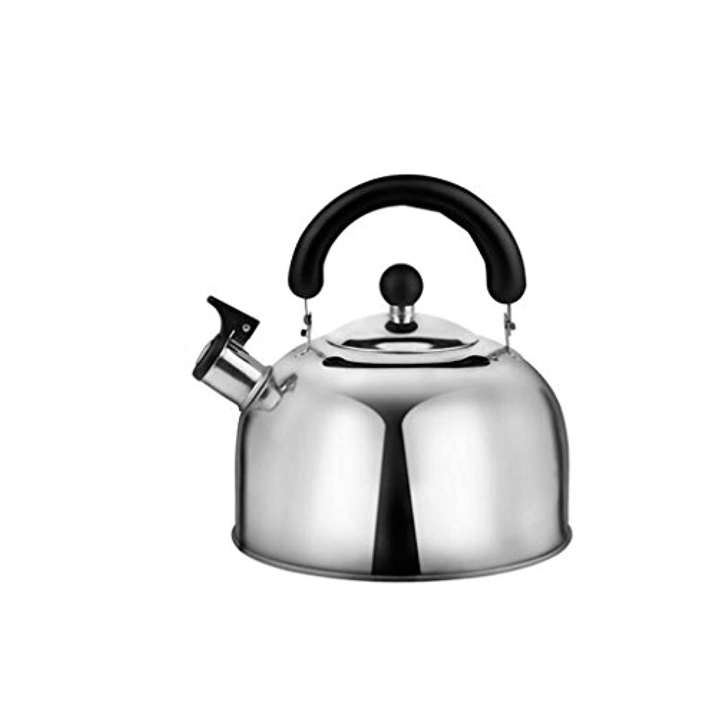 愛情繕う段階GAOLILI ガスケトル304ステンレススチール大容量家庭用電磁オーブンガスケトルシックニングホイッスルケトル4L、5L (サイズ さいず : 4l)