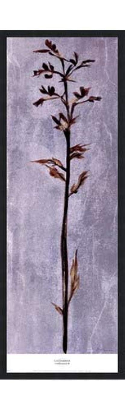 驚くばかりワーカーのスコアCool Botanicals III by Liz Jardine – 12 x 38インチ – アートプリントポスター 12 x 36 Inch LE_265314-F101-12x38