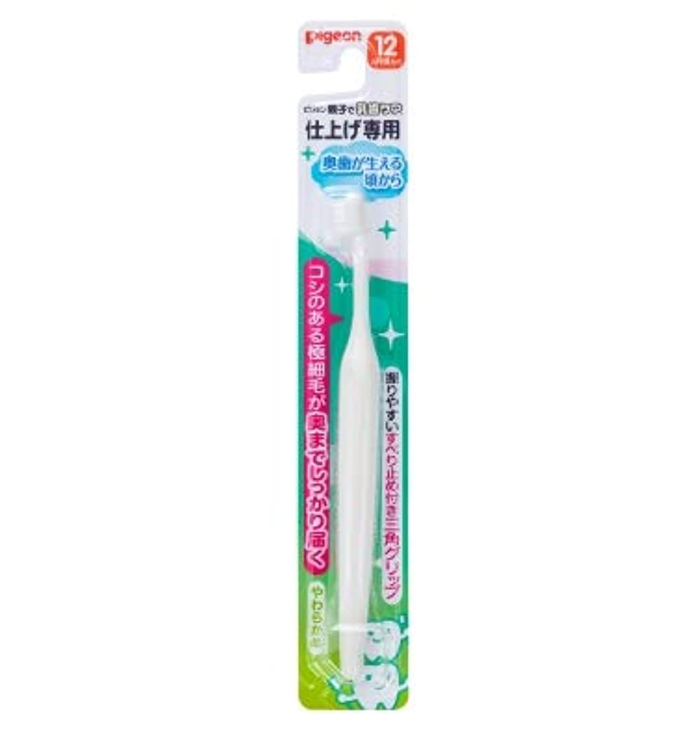 祭り給料調査【まとめ買い】ピジョン 仕上げ専用歯ブラシ 奥歯が生える頃から ×12個