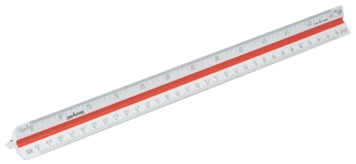 光電不道徳ファンシードラパス 三角スケール 一般用 プラスチック製 30cm 副尺なし 16354