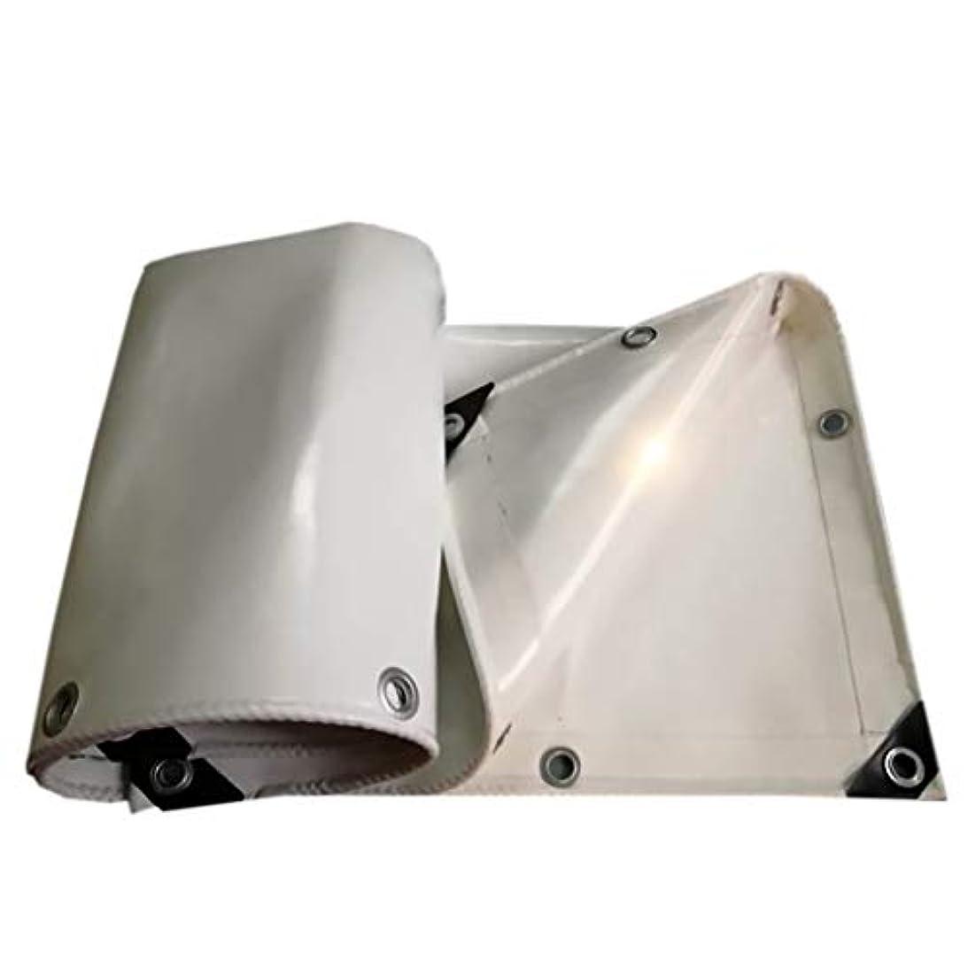 ガイドライン確かに素人厚手防水防水ターポリントラックターポリンナイフ掻き布-650g / m 2、厚さ:0.65 mm、白 (サイズ さいず : 2m*1.5m)