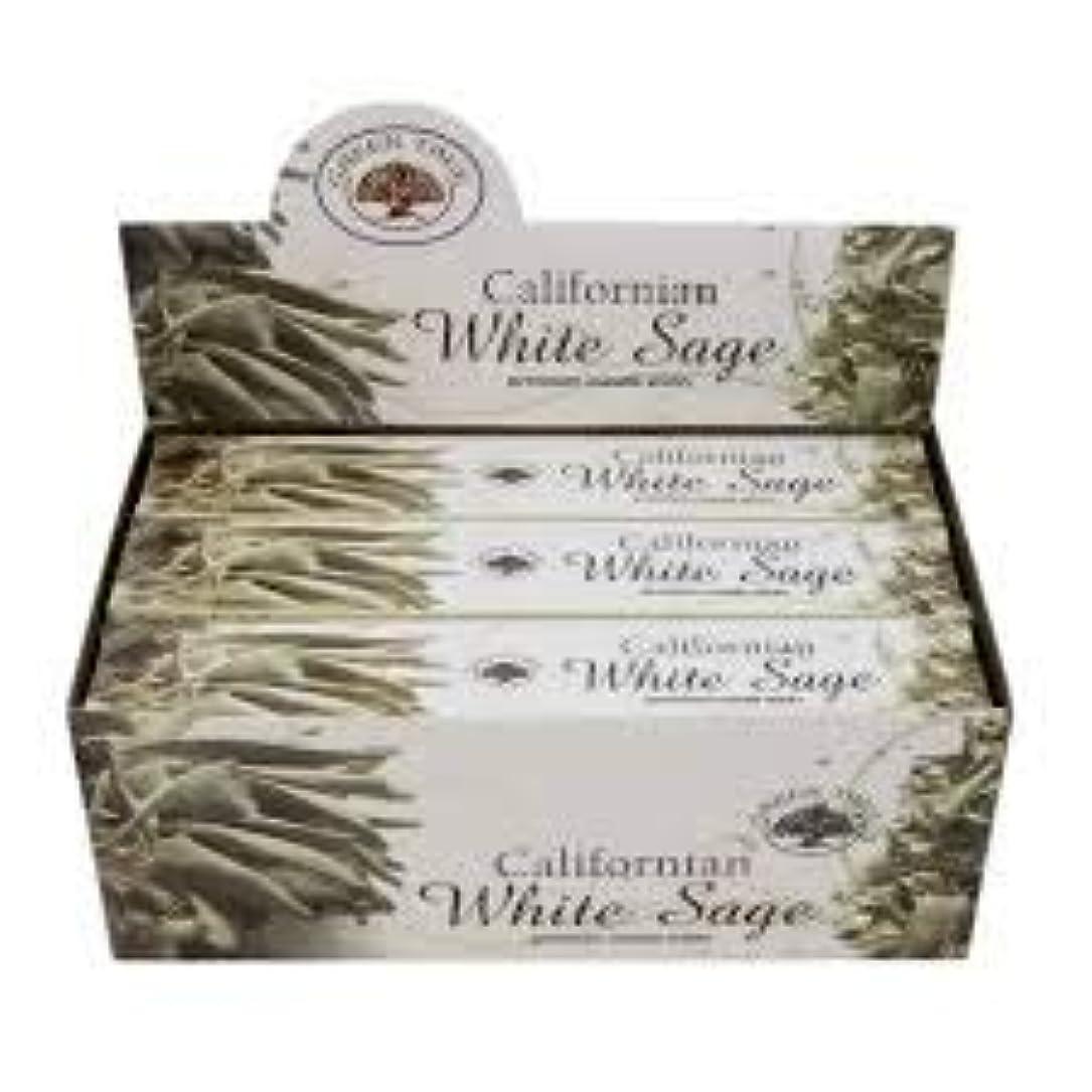 努力する団結モノグラフGREEN TREE WHITE SAGE ホワイトセージ お香 スティック 約15本入 (1箱) [並行輸入品]