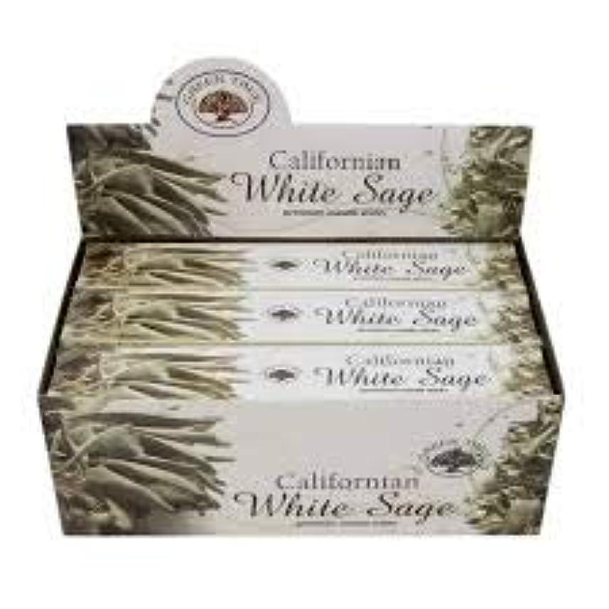 馬鹿麻痺させるピグマリオンGREEN TREE WHITE SAGE ホワイトセージ お香 スティック 約15本入 (1箱) [並行輸入品]