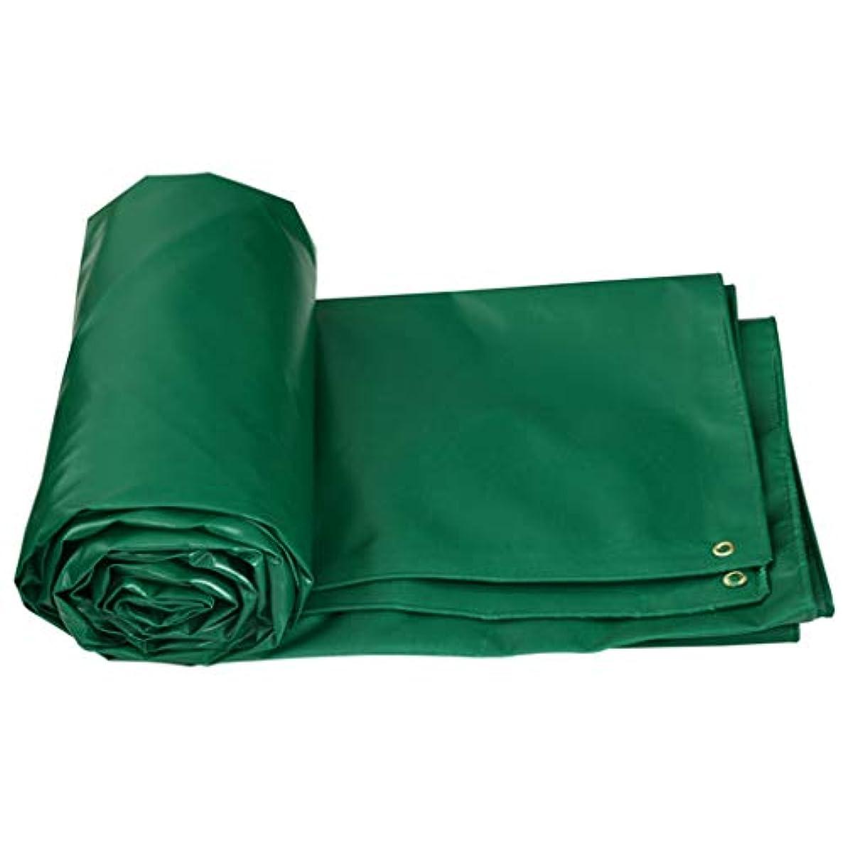 調査読書で出来ているFH サンプロテクションターポリン、防水布、厚手防水ポンチョキャノピーターポリンアウトドアオーニング布 (サイズ さいず : 2×3m)