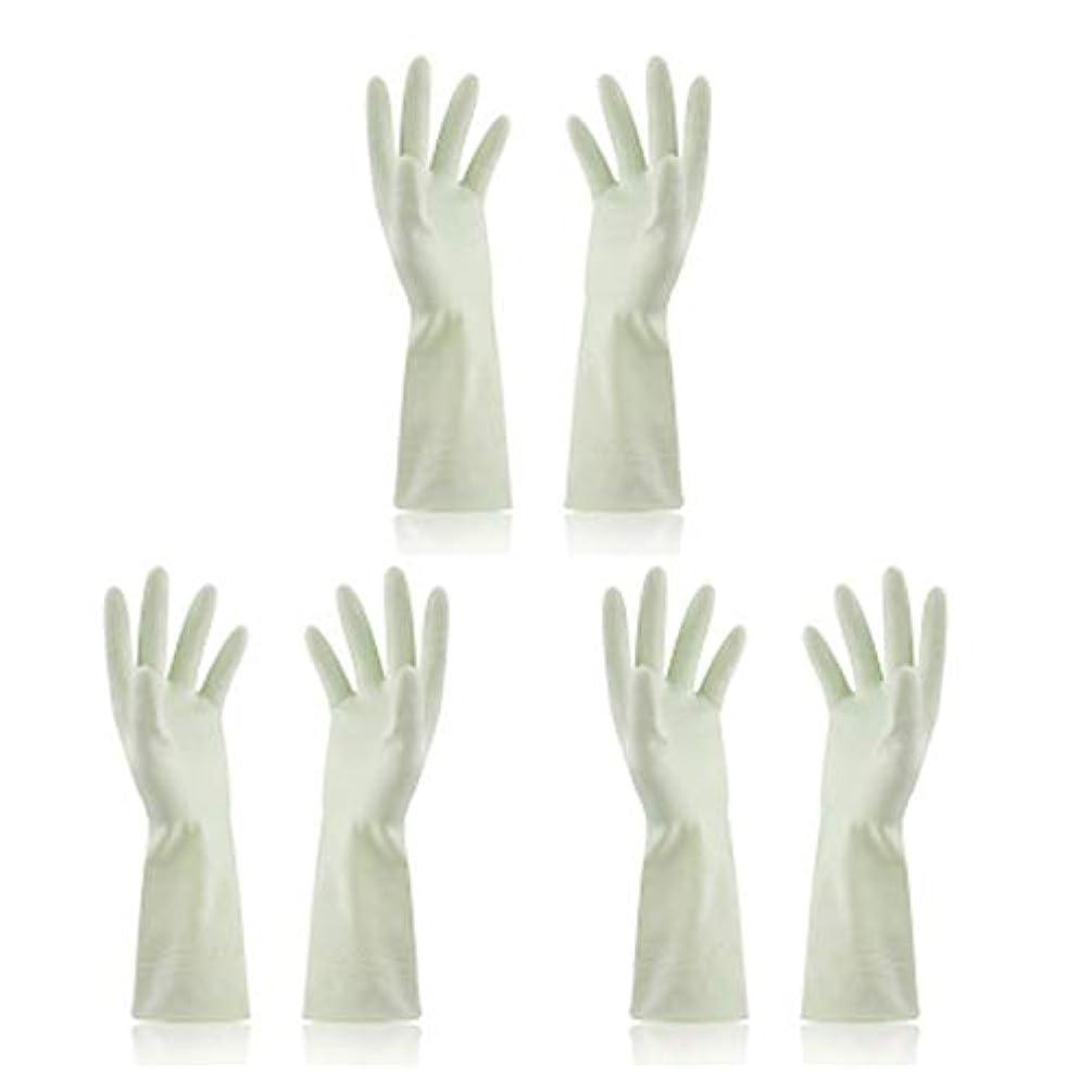 自分祖父母を訪問レタッチBTXXYJP キッチン用手袋 手袋 食器洗い 炊事 作業 食器洗い 掃除 園芸 洗車 防水 防油 手袋 (Color : Green, Size : M)