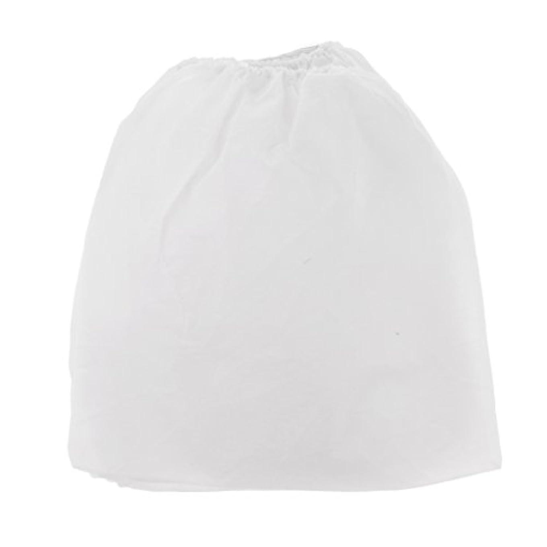 アルファベット順胚アンドリューハリディネイルアートの吸塵のコレクターのための10x Non-woven交換用バッグ