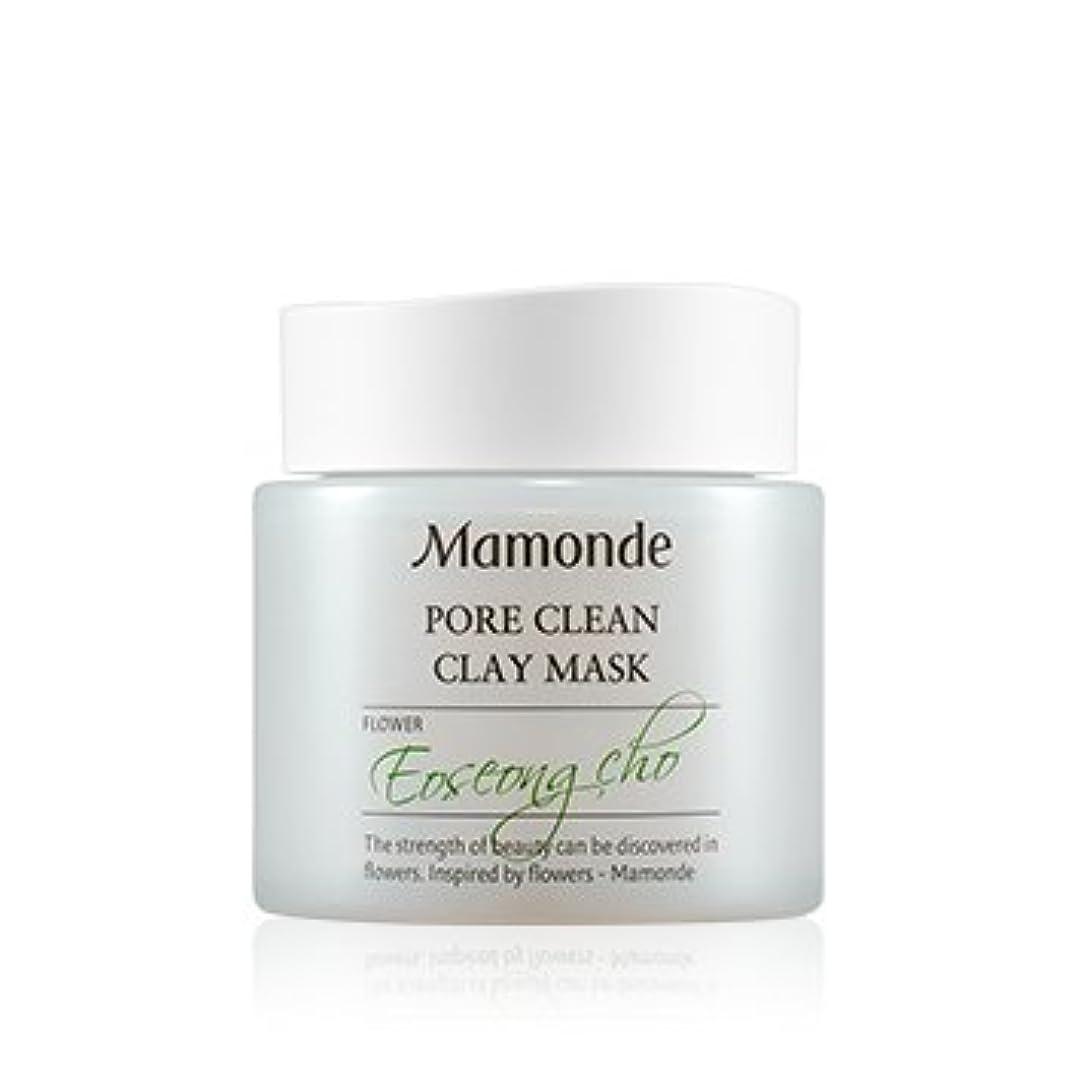 揃える勘違いする広々とした[New] Mamonde Pore Clean Clay Mask 100ml/マモンド ポア クリーン クレイ マスク 100ml [並行輸入品]