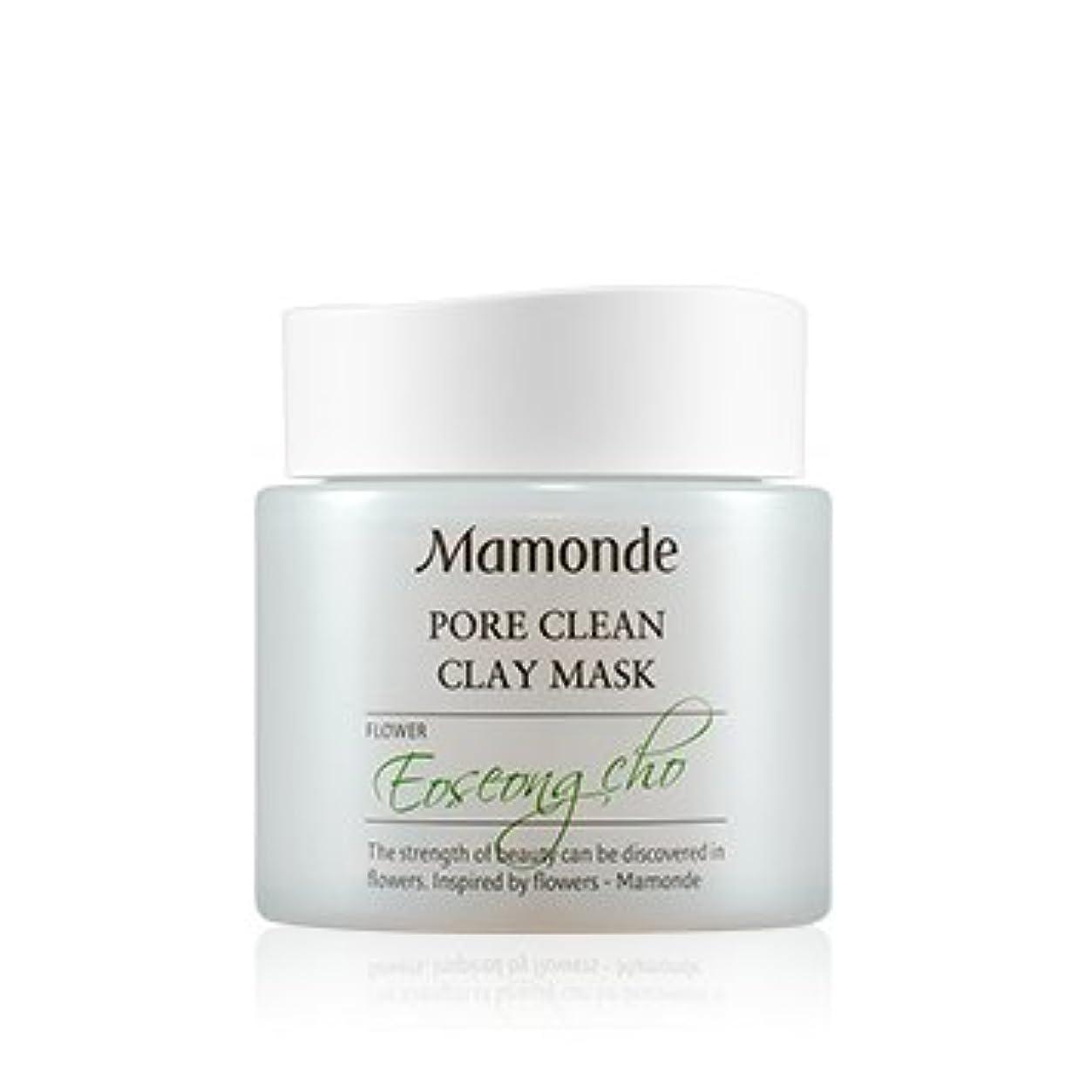 減らす天文学複製[New] Mamonde Pore Clean Clay Mask 100ml/マモンド ポア クリーン クレイ マスク 100ml [並行輸入品]