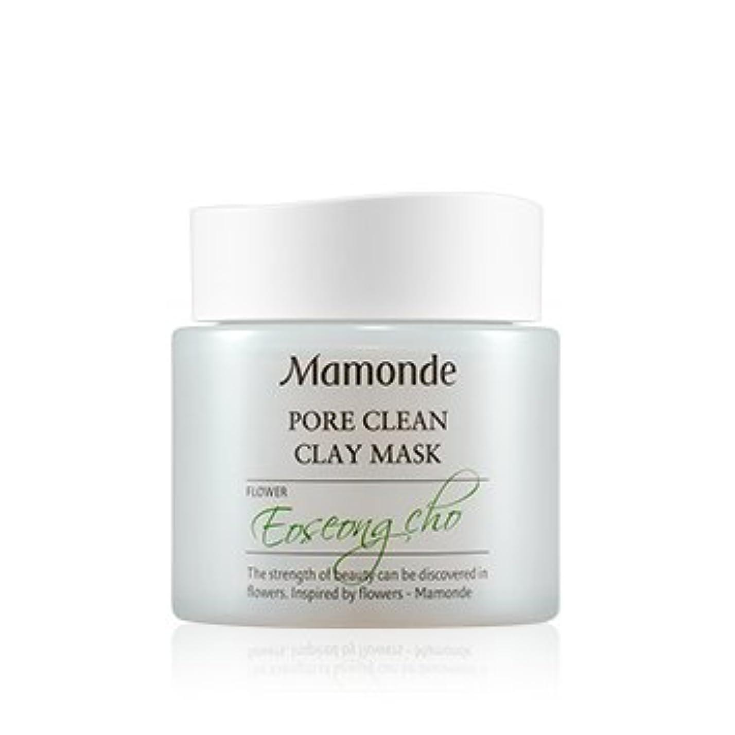青プロフェッショナル架空の[New] Mamonde Pore Clean Clay Mask 100ml/マモンド ポア クリーン クレイ マスク 100ml [並行輸入品]