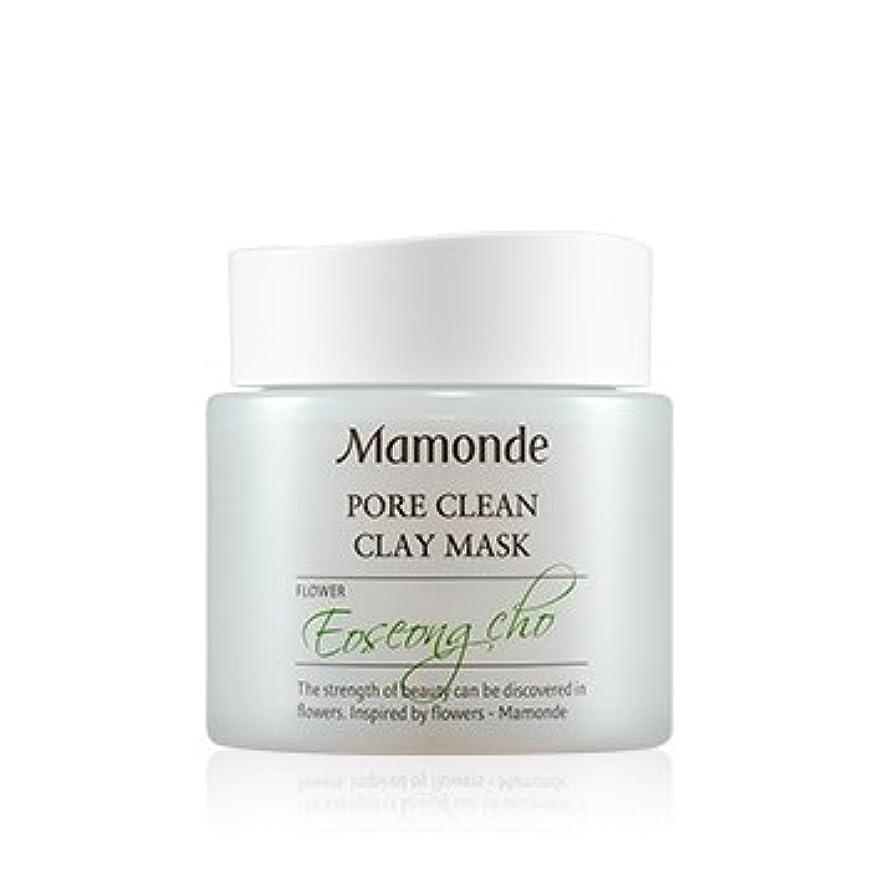 明らかにするバイソン鈍い[New] Mamonde Pore Clean Clay Mask 100ml/マモンド ポア クリーン クレイ マスク 100ml [並行輸入品]