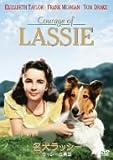 名犬ラッシー/ラッシーの勇気 [DVD] 画像