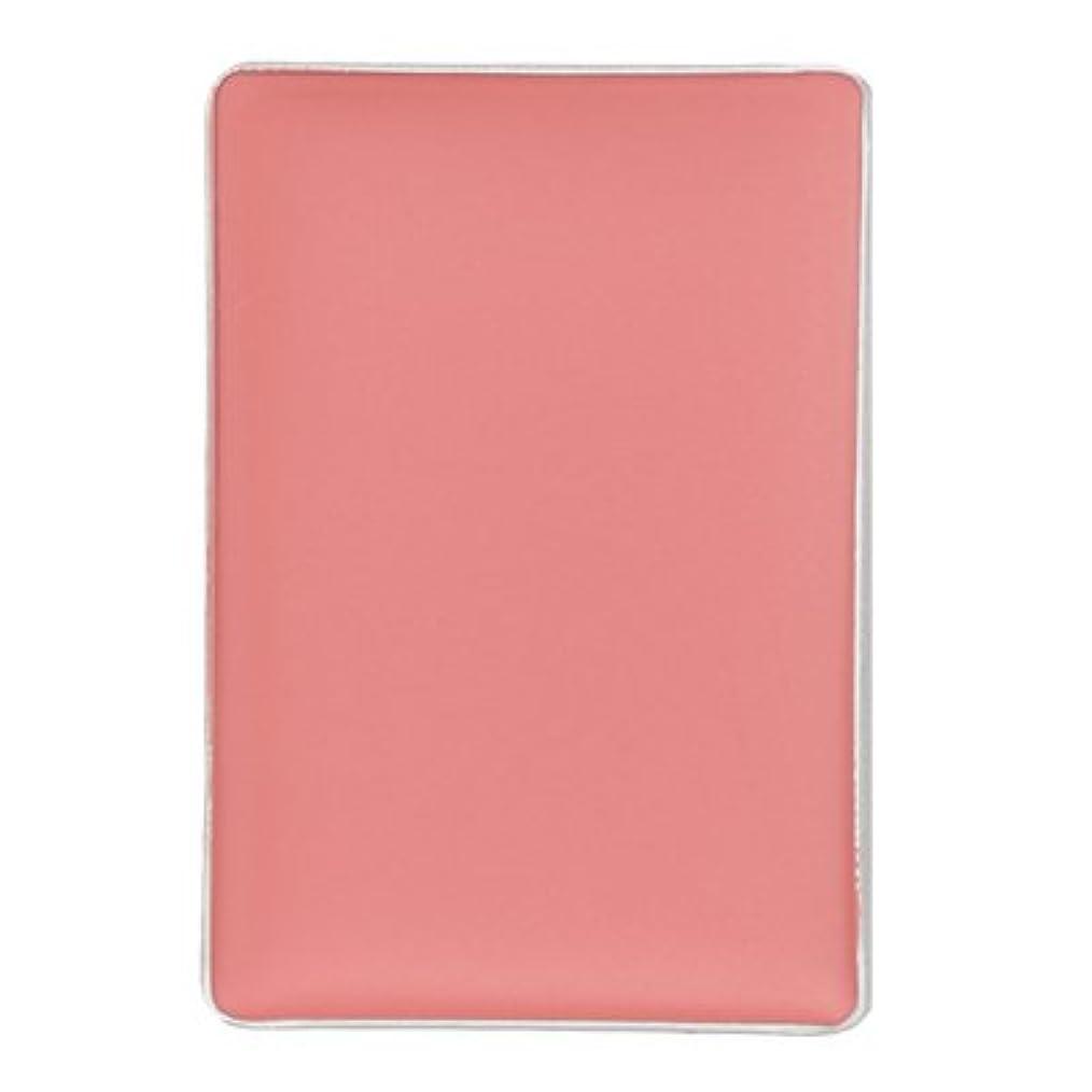 解釈する無声で余剰かづきれいこ ハードファンデーション影セット(リフィル) ピンク<影2>