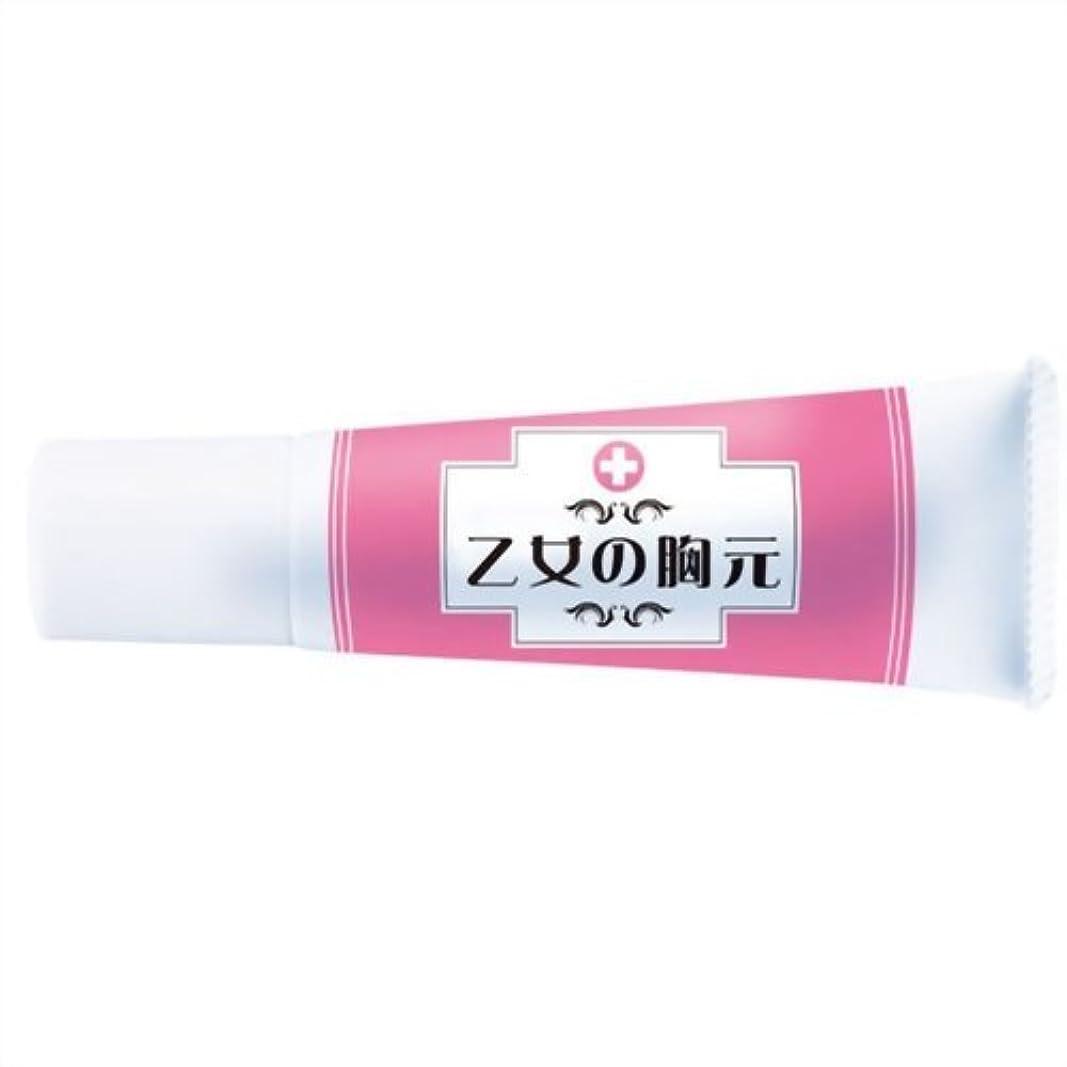 観点オートメーション賞乙女の胸元