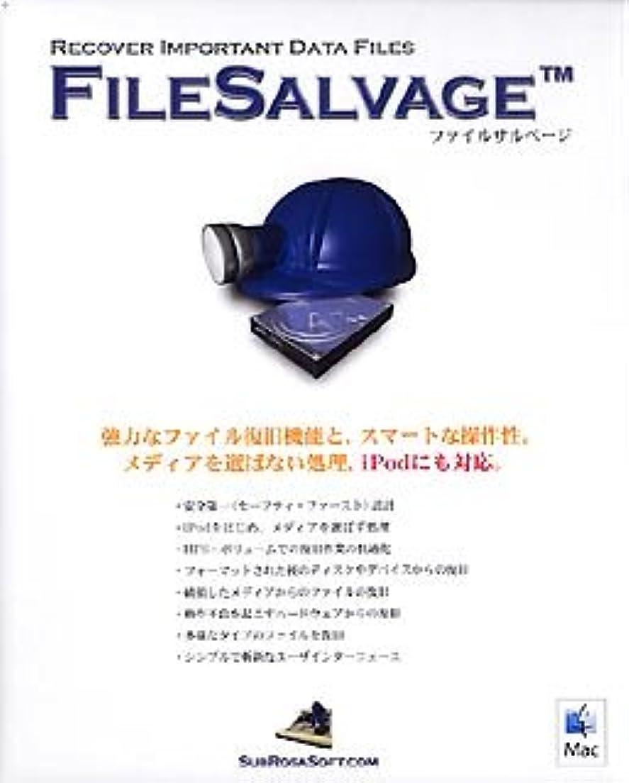西部晩ごはん番号FileSalvage
