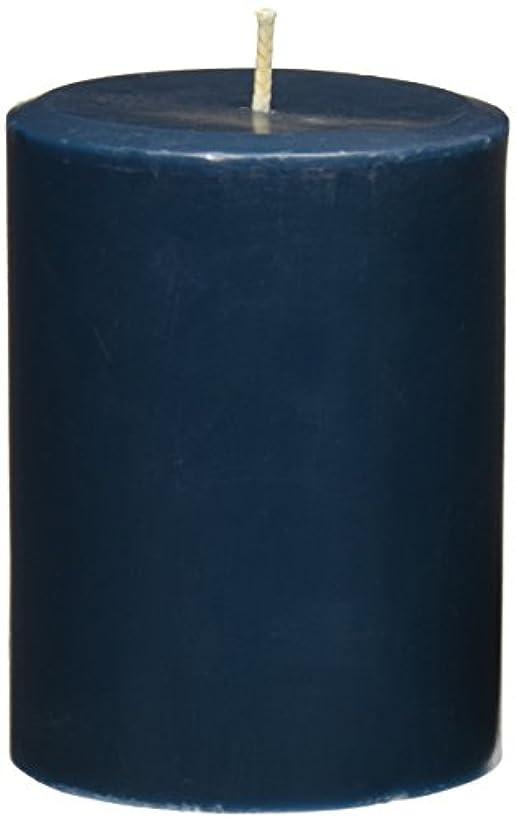士気無秩序擬人Northern Lights Candles Sea Salt &海藻FragranceパレットPillar Candle、3 x 4