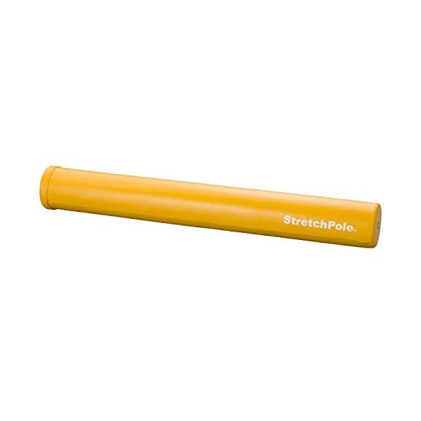 LPN ストレッチポール(R)MX イエロー 0010の商品画像