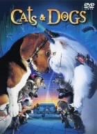 キャッツ&ドッグスのイメージ画像