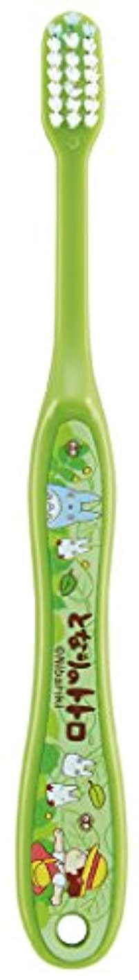 ペース余裕があるバンドSKATER となりのトトロ(さんぽ) 歯ブラシ(転写タイプ) 小学生用 TB6N