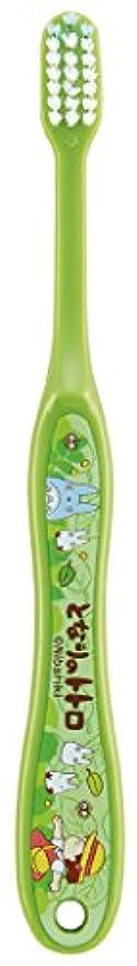 ほのか勧告代表SKATER となりのトトロ(さんぽ) 歯ブラシ(転写タイプ) 小学生用 TB6N