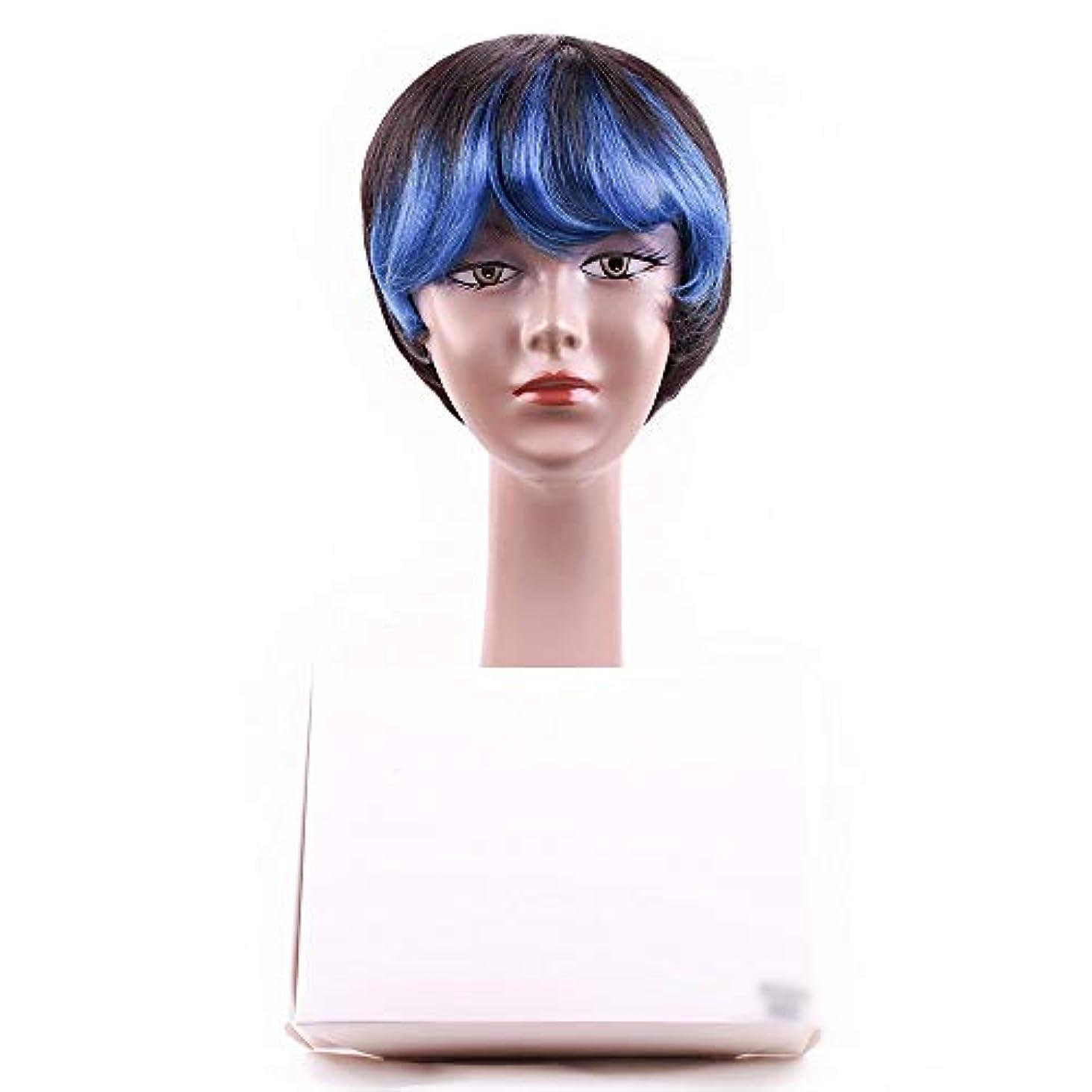 縁石まっすぐにする正直YOUQIU 斜め前髪完全な頭部コスプレパーティーウィッグかつらと女性の人間の毛髪のショートボブウィッグ (色 : 青)