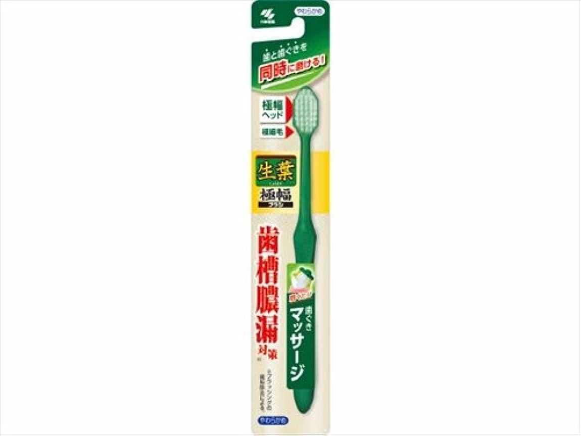 生葉極幅ブラシ やわらかめ × 96個セット