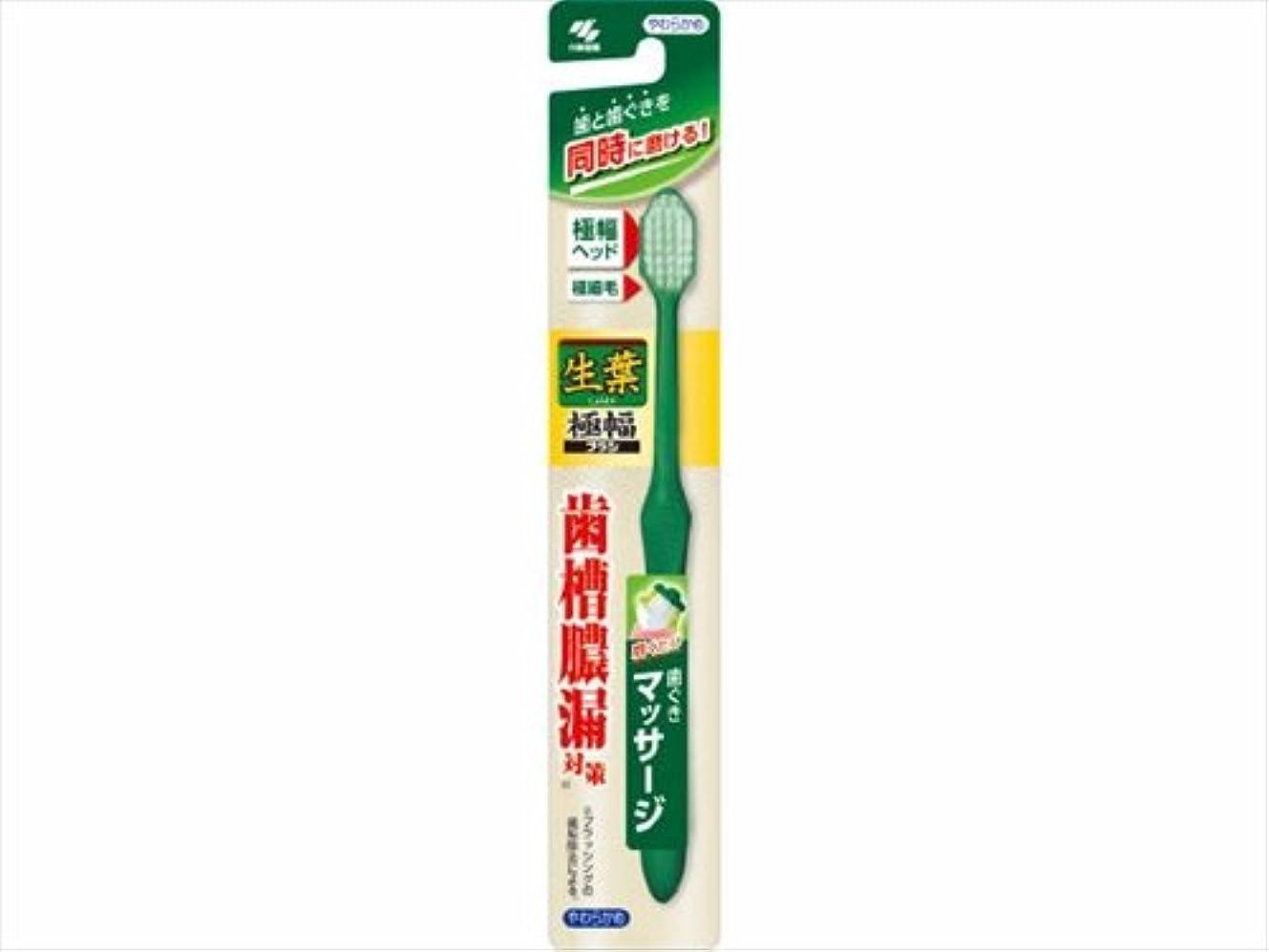 生葉極幅ブラシ やわらかめ × 10個セット