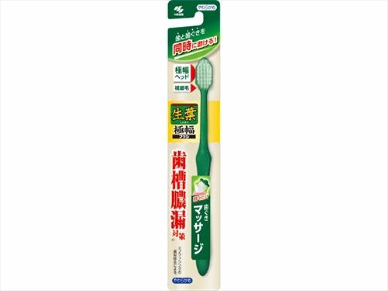 。制限された裁量生葉極幅ブラシ やわらかめ × 10個セット