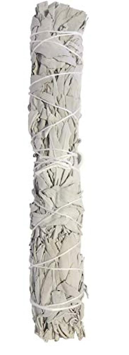 茎不名誉なペンExtra Largeカリフォルニアホワイトセージ、9 to 10インチSmudgingスティック、Aromatic。Perfect forホーム祝福、an American Indian Tradition。