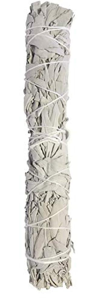 切手可動クランプExtra Largeカリフォルニアホワイトセージ、9 to 10インチSmudgingスティック、Aromatic。Perfect forホーム祝福、an American Indian Tradition。