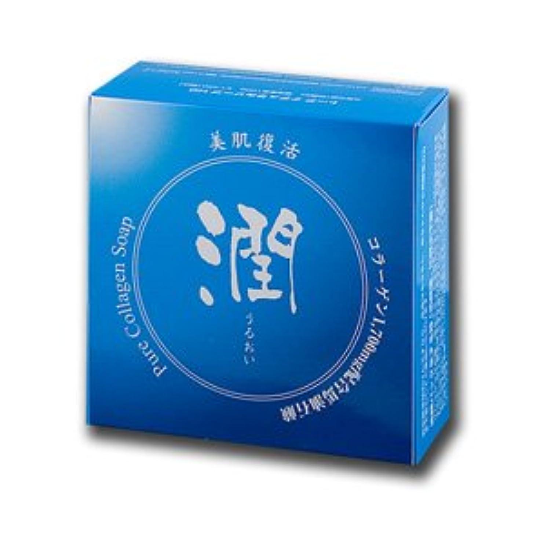 強風ニッケルソケットコラーゲン馬油石鹸 潤 100g (#800410) ×6個セット