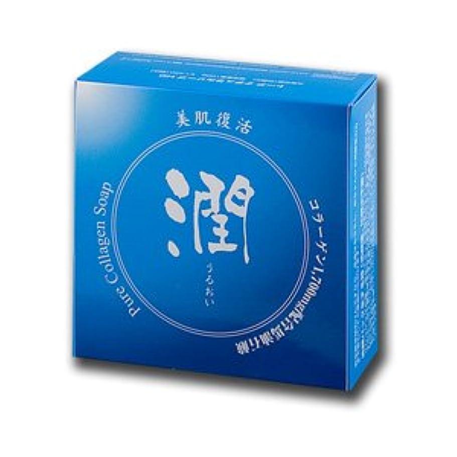 マイクロフォン荒廃するチップコラーゲン馬油石鹸 潤 100g (#800410) ×8個セット