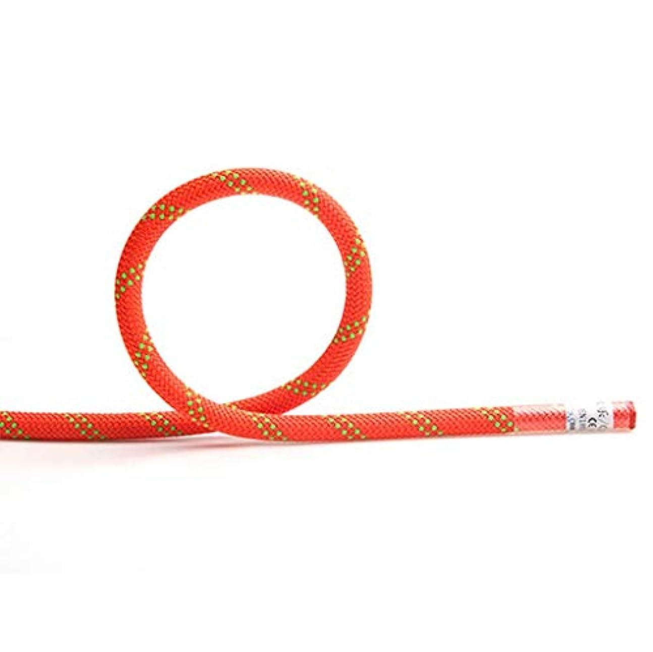 お風呂を持っている乗って説得力のあるHSBAIS 屋外用クライミングロープ、プロ静的ロッククライミング用安全ロープ カラビナ スピードドロップロープ ファイアーロープ ハイキングとハイキング,Orange_12mm/15m/49ft