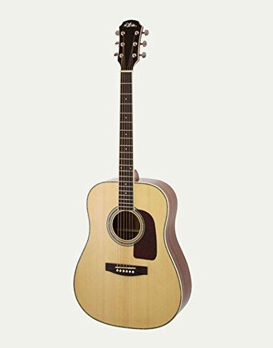 Aria ( アリア ) AD-20 N 単板トップ アコースティックギター 国内未発売レアモデル ソフトケース付