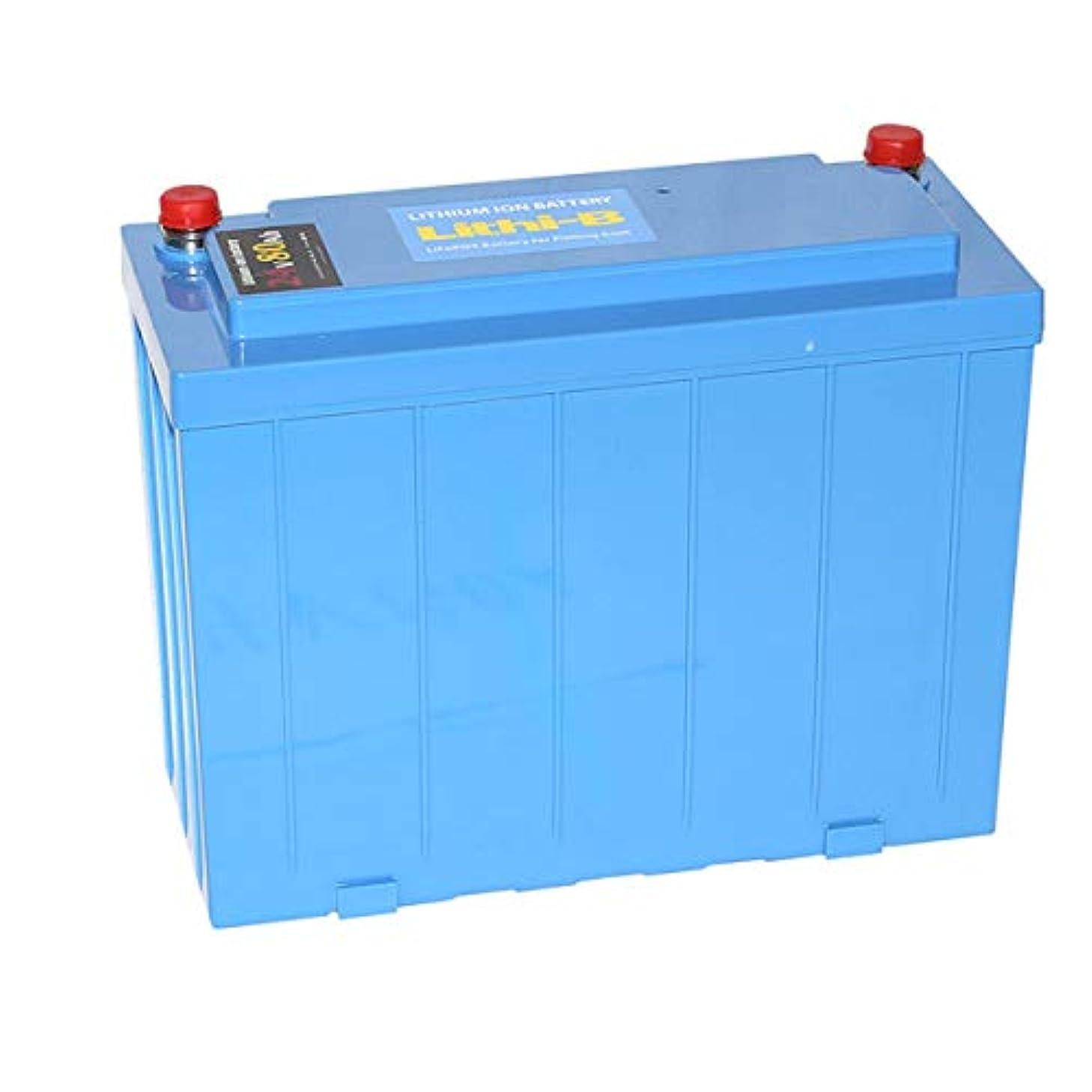 書くカード放置LifePO4 リチウムバッテリー リチビー(Lithi-B) 24V 80Ah