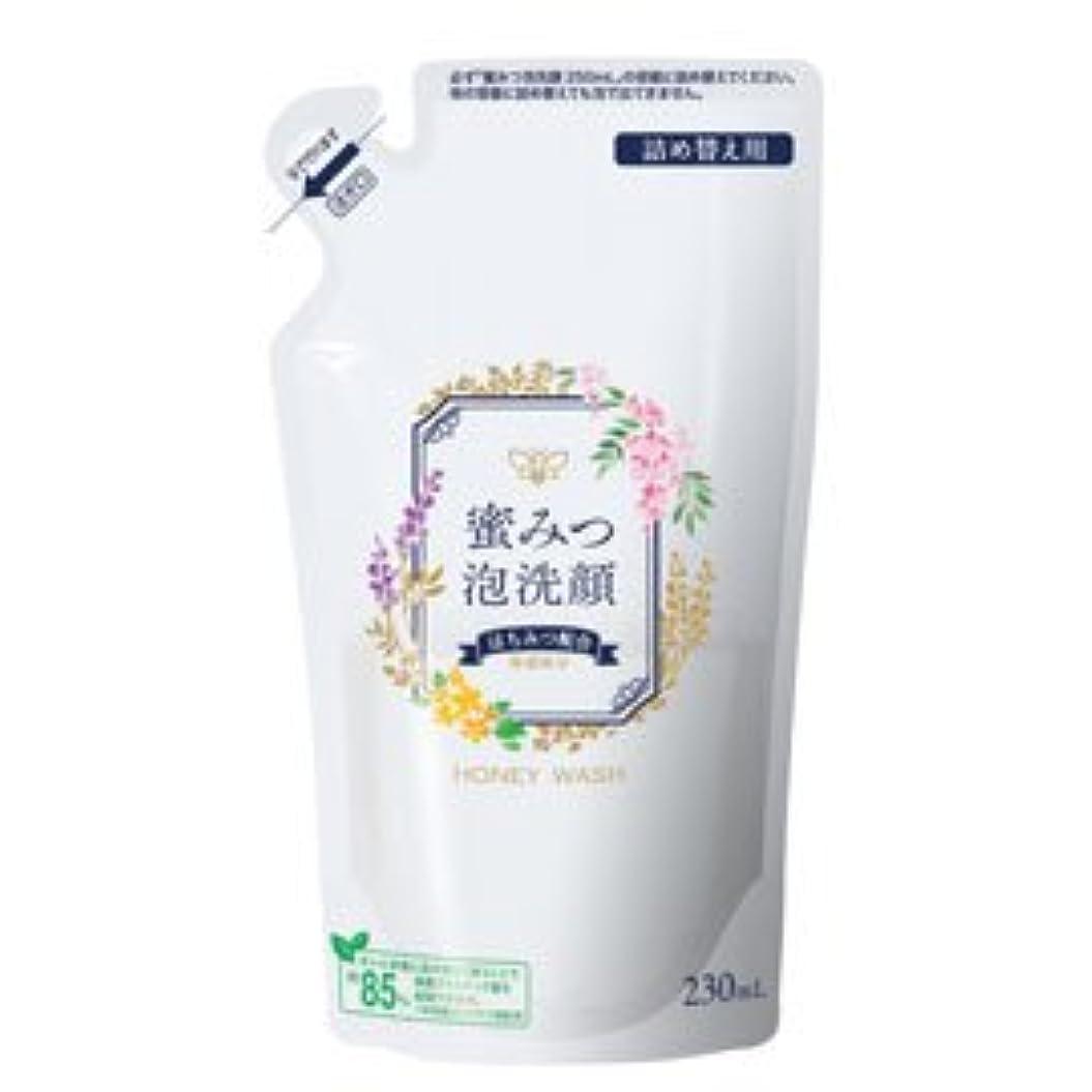 時安定した銛蜜みつ泡洗顔 230mL(詰替用)
