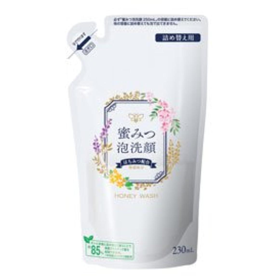 正直夜間関与する蜜みつ泡洗顔 230mL(詰替用)