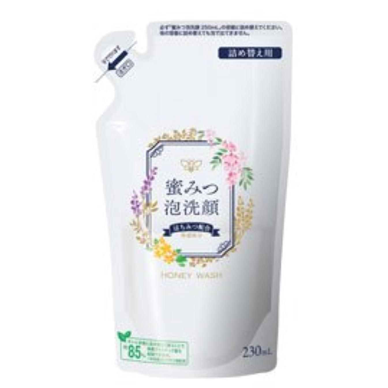 脇に素晴らしさ入場料蜜みつ泡洗顔 230mL(詰替用)