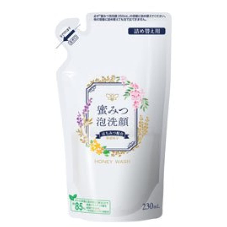ポジティブモニターダルセット蜜みつ泡洗顔 230mL(詰替用)