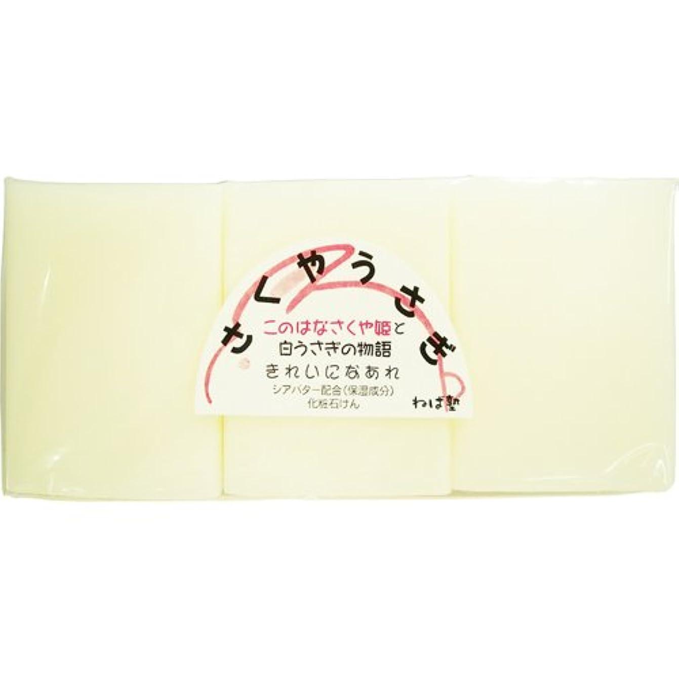 プレフィックスかわす白雪姫ねば塾 さくやうさぎ (117g×3個入)