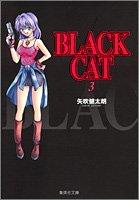 BLACK CAT 3 (集英社文庫―コミック版)の詳細を見る