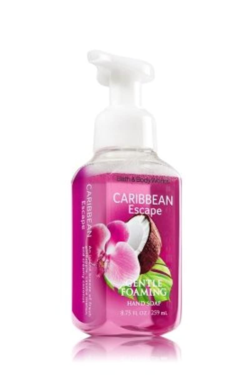 Bath & Body Works ハンドソープ (Caribbean Escape)  並行輸入