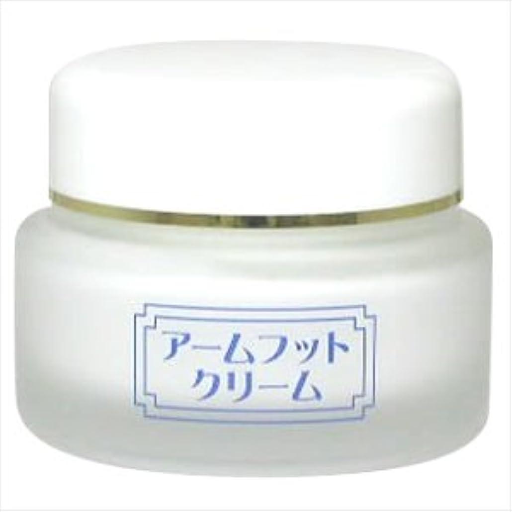 思い出すビジネス誤解する薬用デオドラントクリーム アームフットクリーム(20g) (1個)