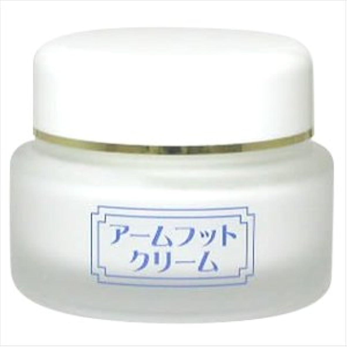 気難しい腐食する魅了する薬用デオドラントクリーム アームフットクリーム(20g) (1個)