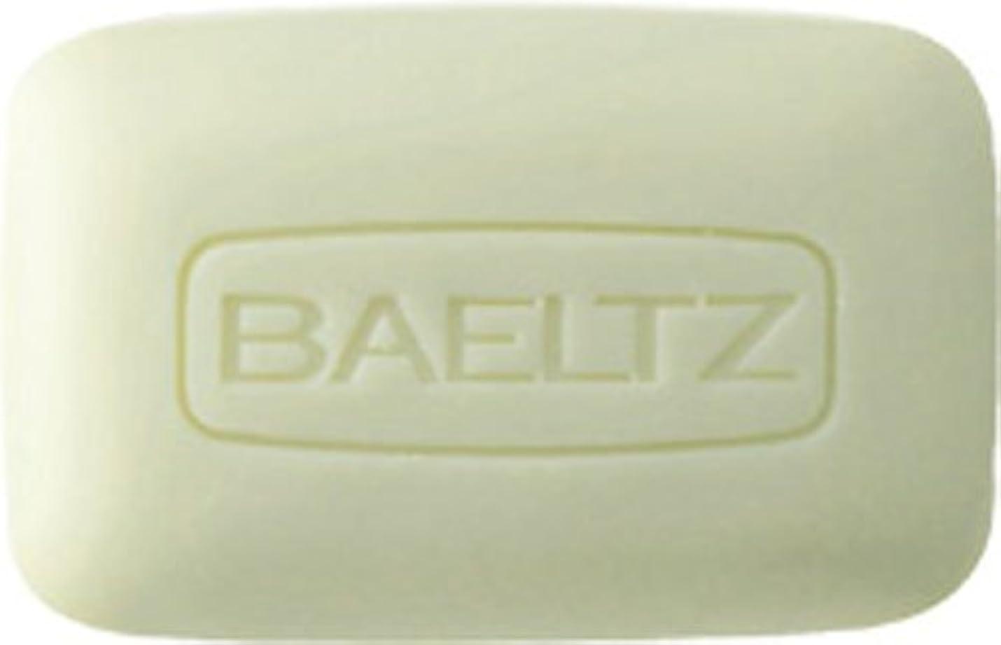 成熟怠けた溶けるドクターベルツ(Dr.BAELTZ) モイスチュアソープ DN 80g(洗顔石けん)