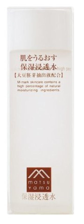 略奪特定の平らなM-mark 肌をうるおす保湿浸透水120ml
