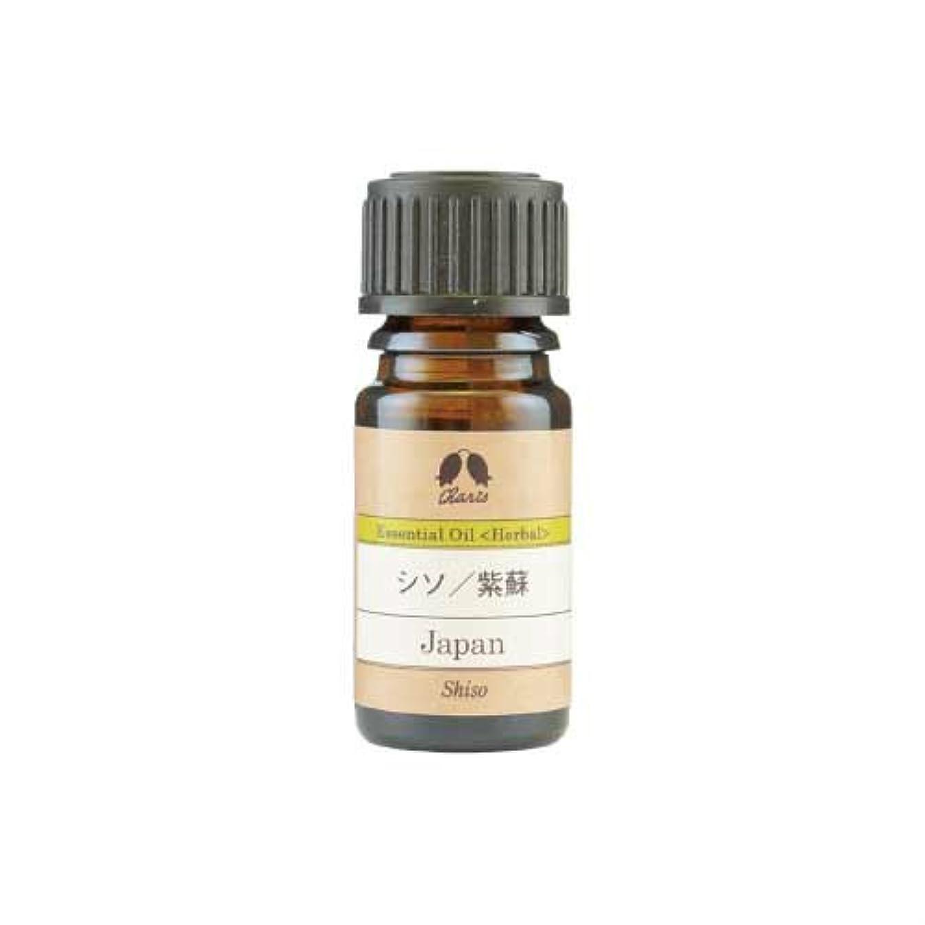 先生環境石鹸カリス シソ/紫蘇 オイル 2ml