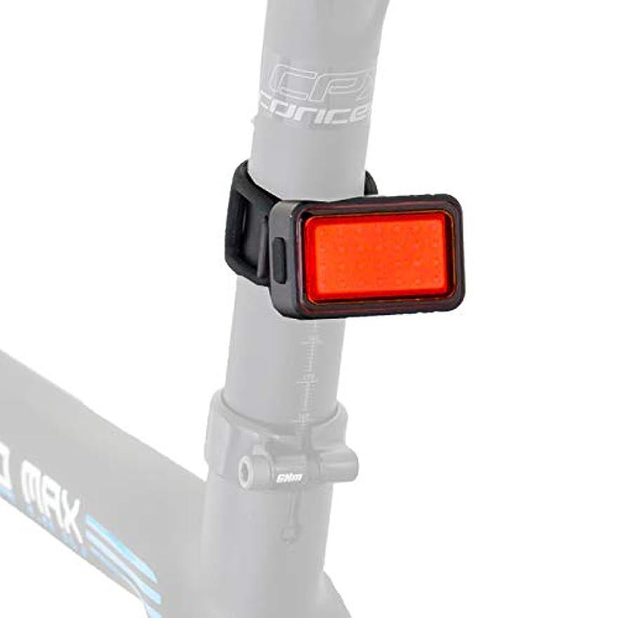 ボリューム等価健康的GORIX ゴリックス 自転車LEDライト AUTO 自動点灯 消灯 LED 明るいライト 100ルーメン USB充電 夜間安全走行自転車ライト(GX-TL820G)