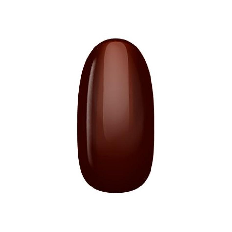 寝室を掃除する聴覚障害者転送アイニティ ハイエンドカラー BR-01M ビターチョコレート 3g