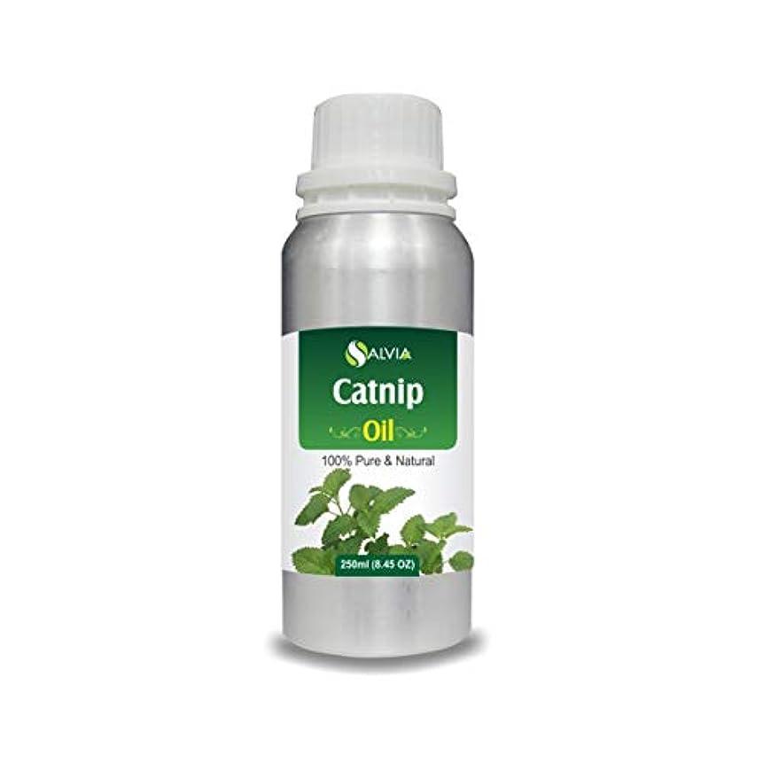 アルコーブ穿孔するからCatnip Oil (Nepeta cataria) 100% Natural Pure Undiluted Uncut Essential Oil 250ml