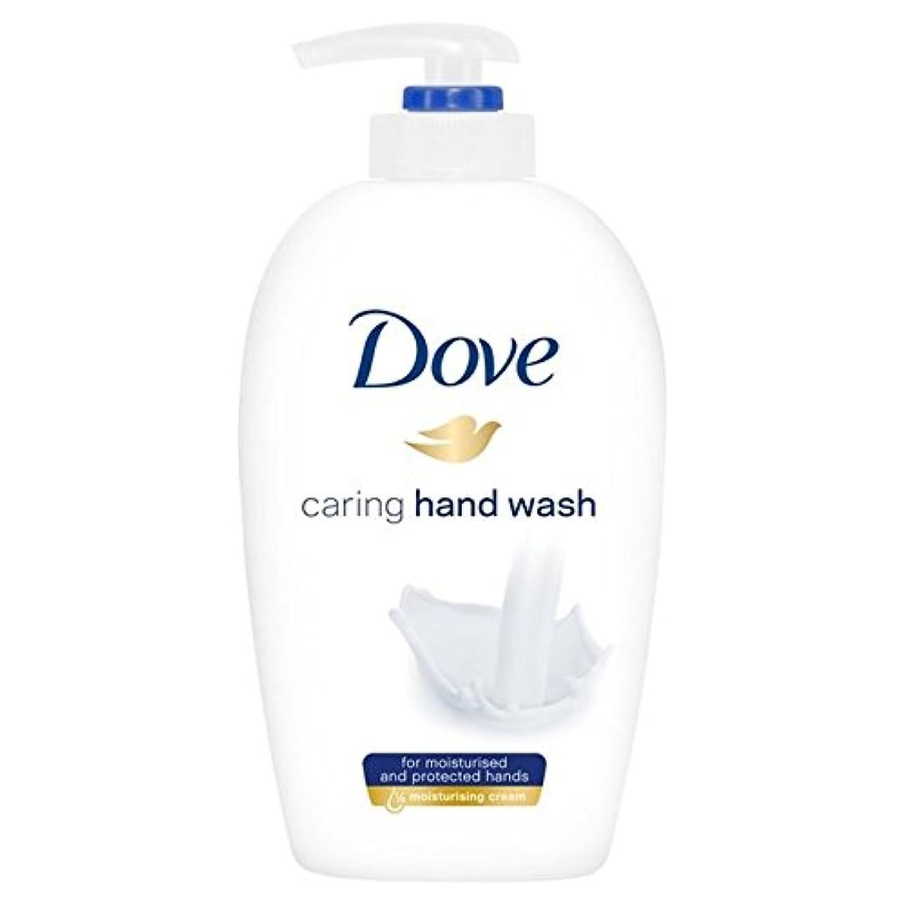 艦隊無傷ラボ鳩思いやり手洗い250ミリリットル x4 - Dove Caring Hand Wash 250ml (Pack of 4) [並行輸入品]